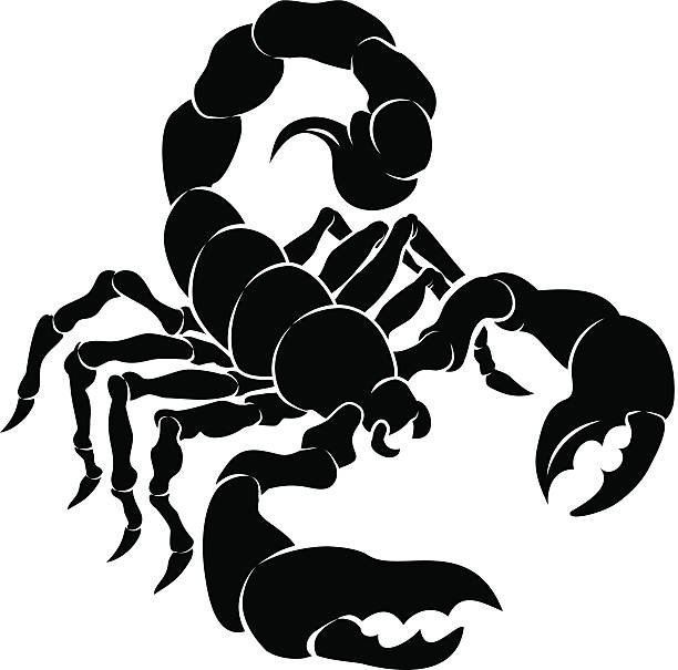 Isolated vector clip art of black u0026 white stylized scorpion vector art  illustration