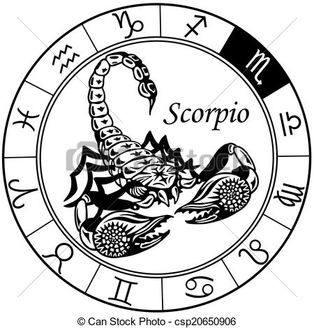 scorpion zodiac black white - csp20650906
