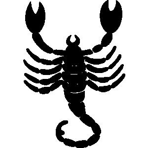 Scorpion backgrounds animals clipart lineart line art shirt
