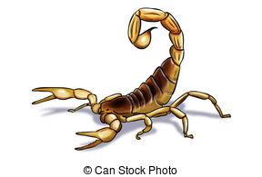 ... scorpion - Digital illustration of an scorpion inked scorpion Clipartby ...