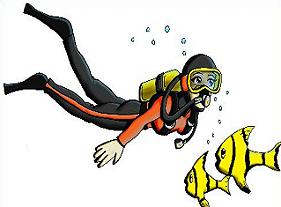 scuba diver and fish