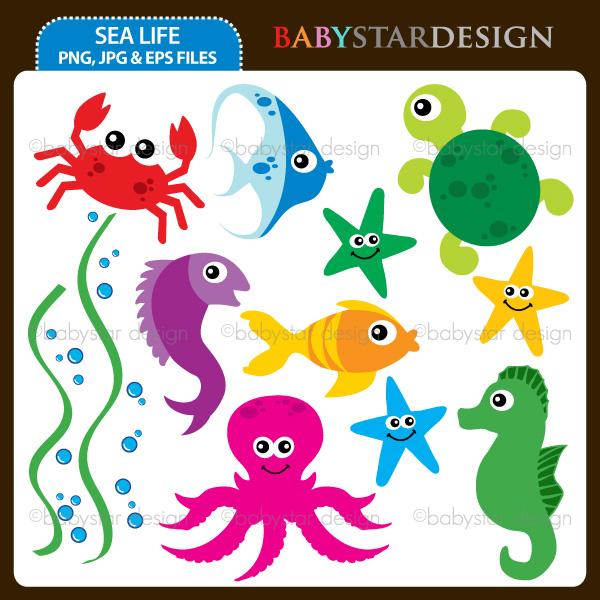 Sea Life-Sea Life-15