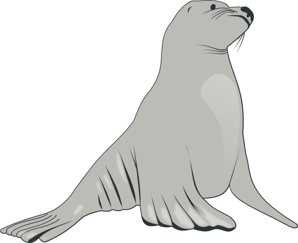 Sea Lion clip art free vector