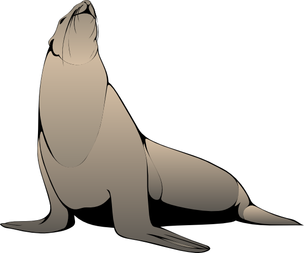 Sea Lion Clip Art