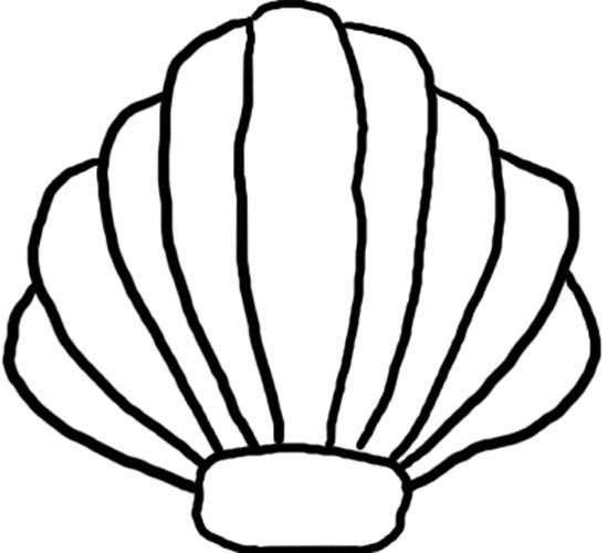 Sea Shells Clip Art - Clipart library-Sea Shells Clip Art - Clipart library-18