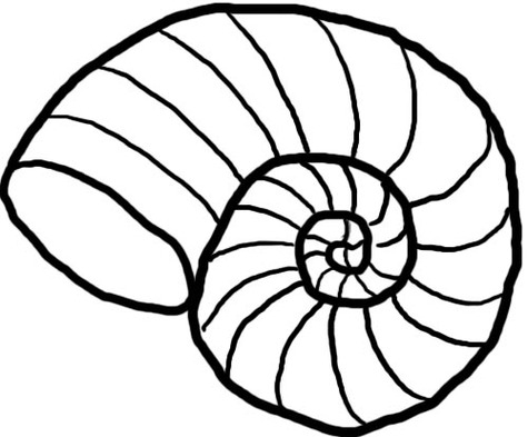... Sea Shells Clip Art - clipartall ...