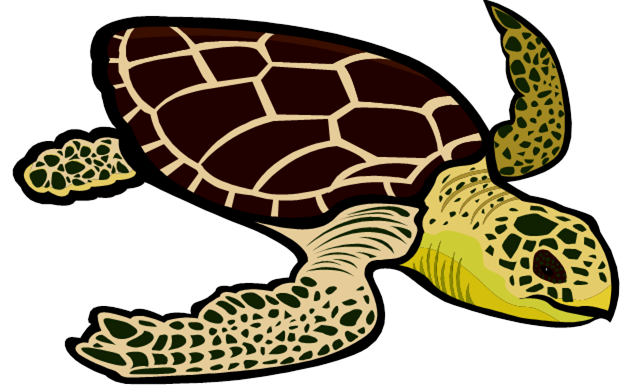 Sea Turtle Clip Art-sea turtle clip art-12
