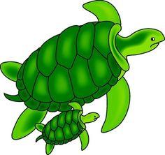 Sea turtle on sea turtles sea turtle crafts and clip art