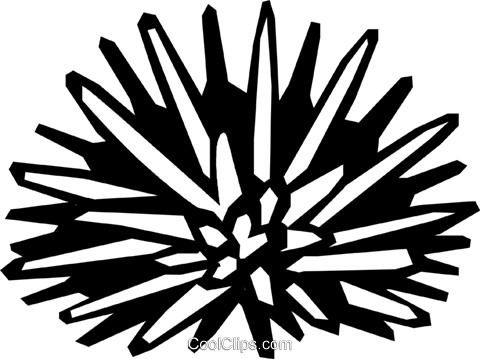 sea urchin Royalty Free Vector Clip Art illustration