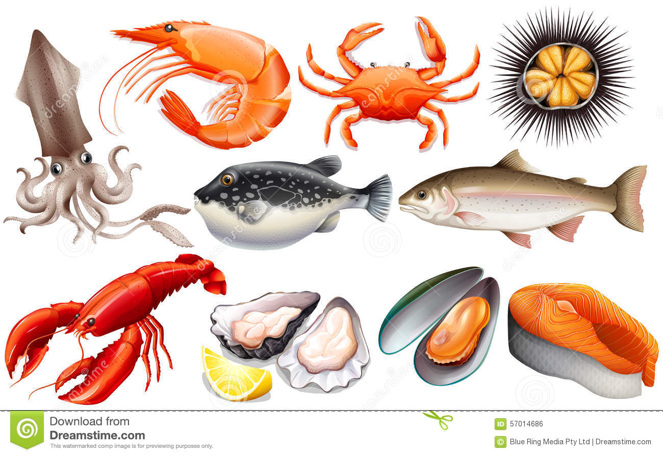 Seafood Clipart-seafood clipart-8