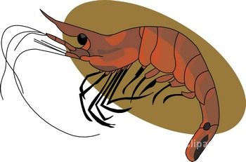 Seafood Clipart Seafood 11 Classroom Clipart