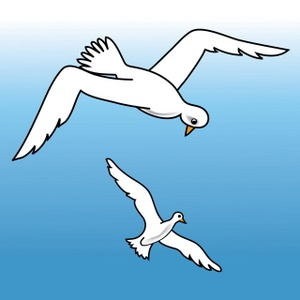 Seagulls Clipart Image Seagulls Flying Over The Ocean Water Looking