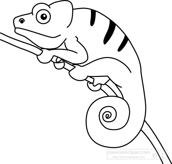 Search results for chameleon pictures graphics clip art