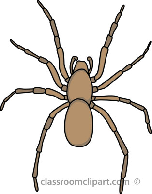 Search Results Search Results For Spider-Search results search results for spider clipart pictures-11