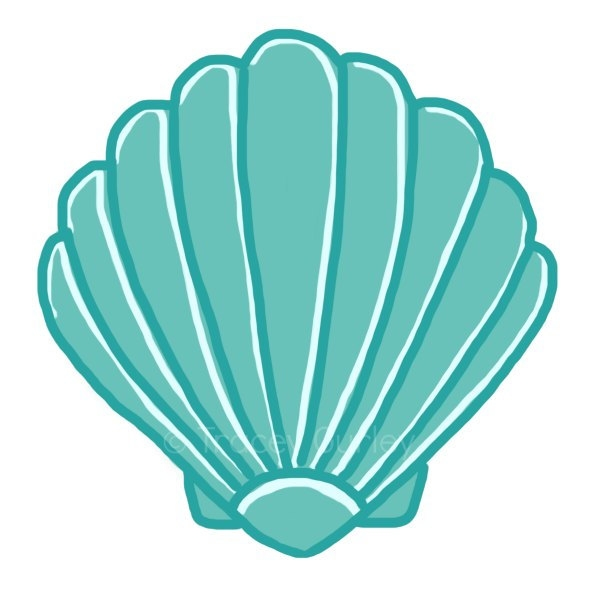 Seashell clip art sea shells .