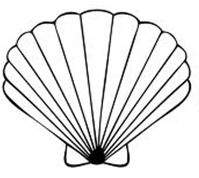 Seashell clipart black and .
