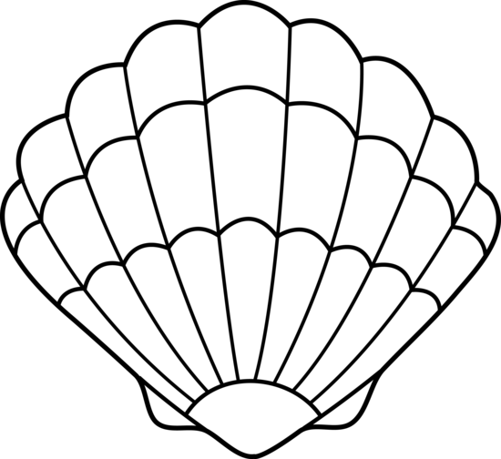 Seashell Clipart Black And White Free Cl-Seashell clipart black and white free clipart images-12