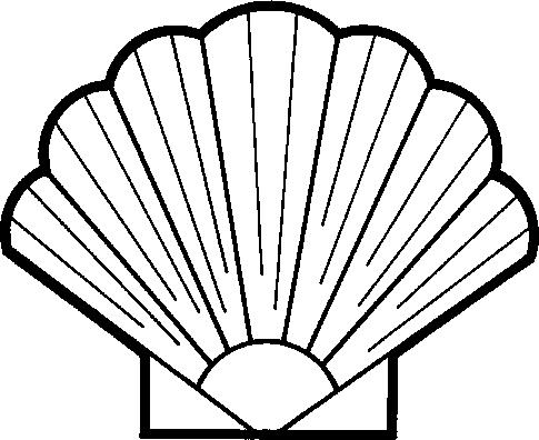 Seashell shell clipart image-Seashell shell clipart image-4