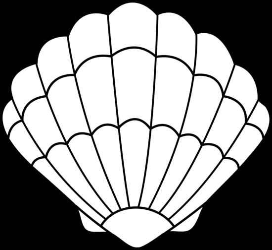 Seashells - ClipArt Best .