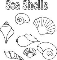 seashells poster black white outline clipart. Size: 88 Kb