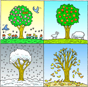 Four Seasons Trees Clipart Cl