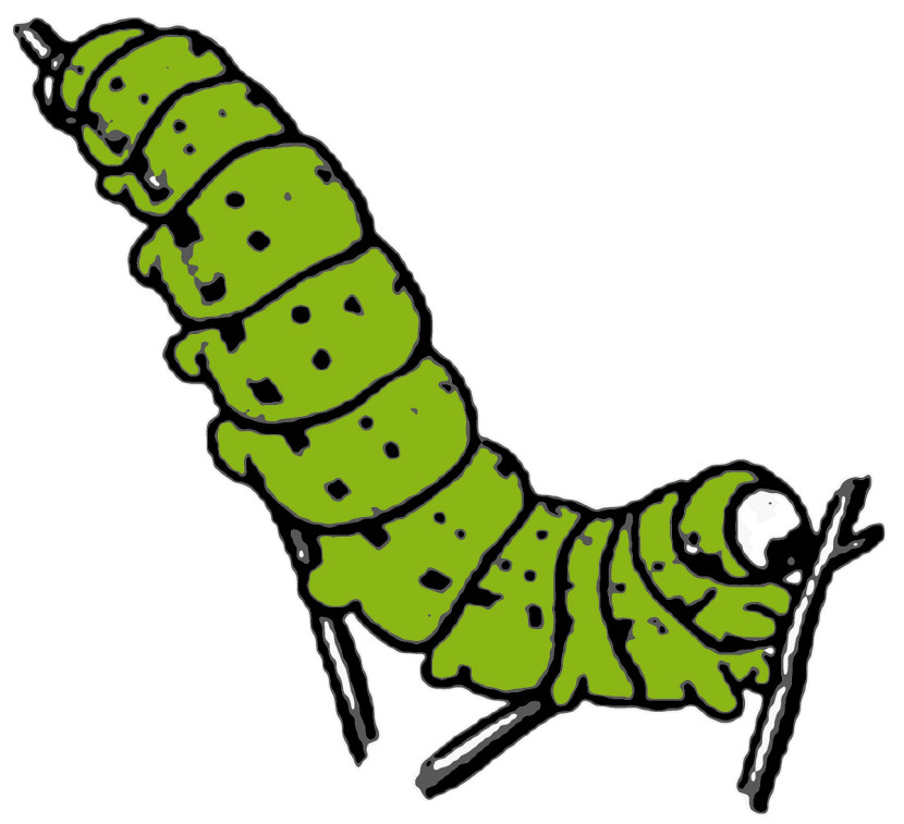 Illustration Of Cute Green Ca
