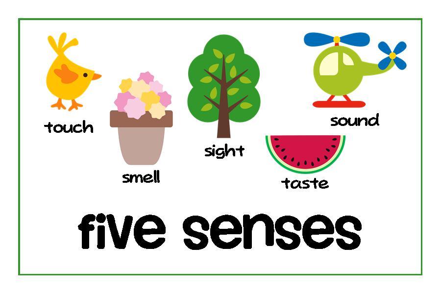 Senses Clipart Clipart Panda Free Clipar-Senses Clipart Clipart Panda Free Clipart Images-15