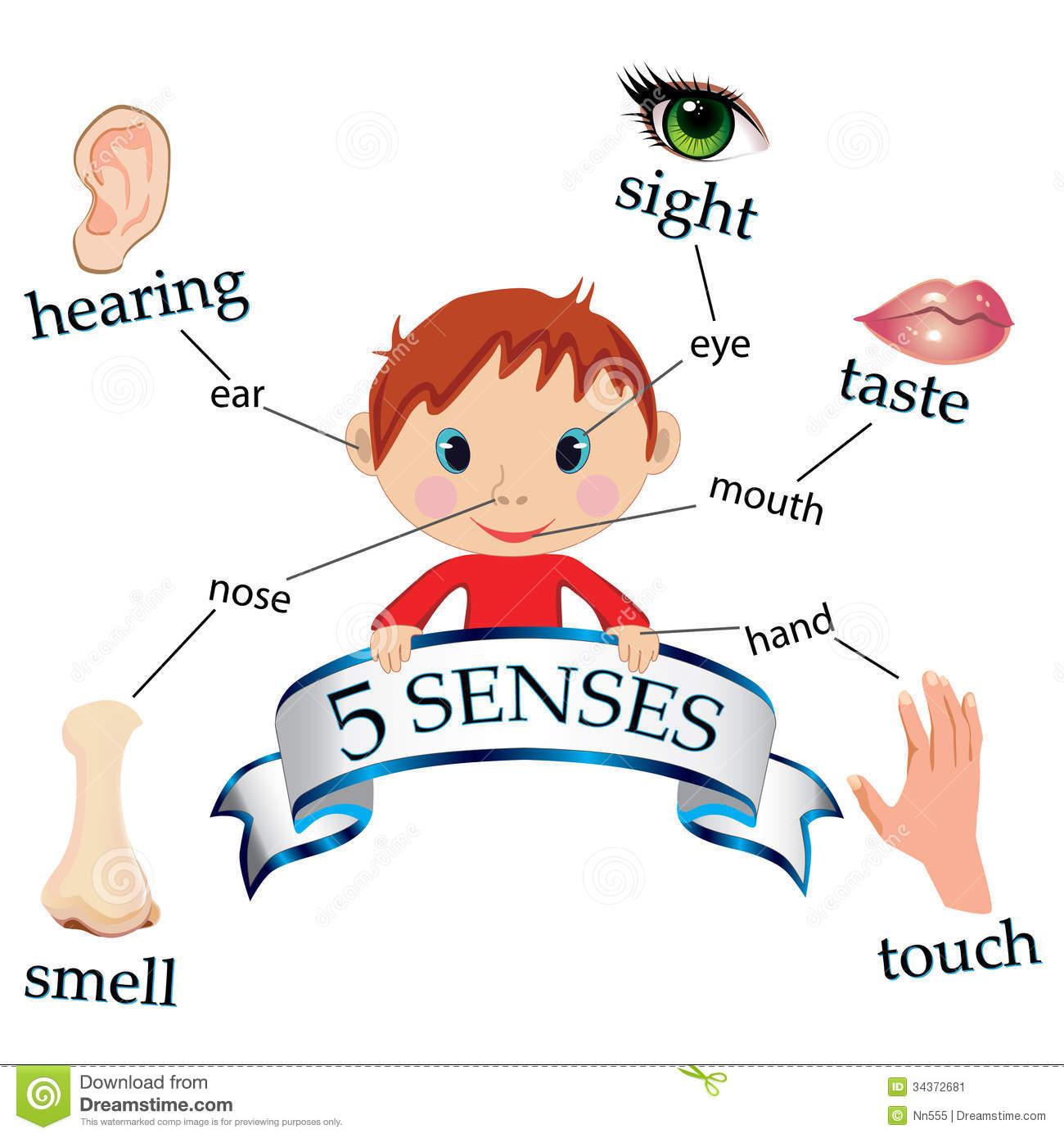 Senses Stock Image Image 34372681