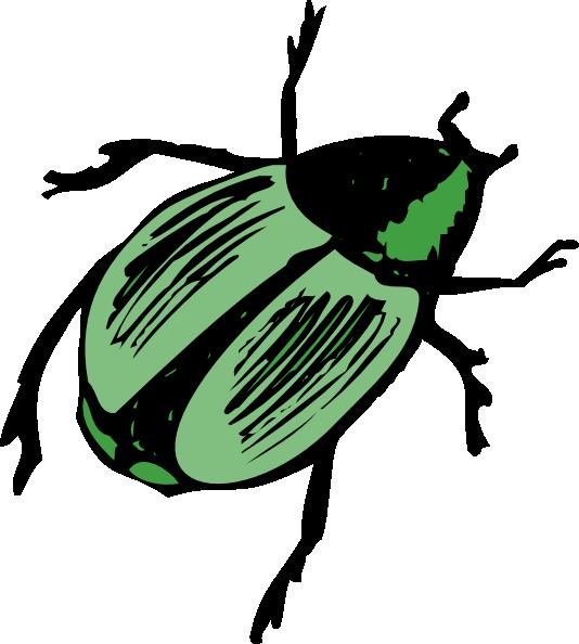 Shiny Green Beetle Clip Art At Clker Com-Shiny Green Beetle Clip Art At Clker Com Vector Clip Art Online-6