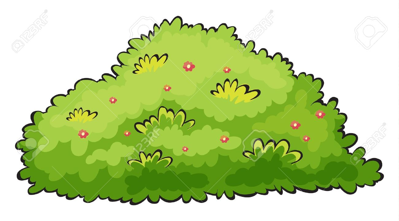 Bush Clipart: Bush: Illustration Of A Gr-Bush clipart: bush: Illustration of a green-2