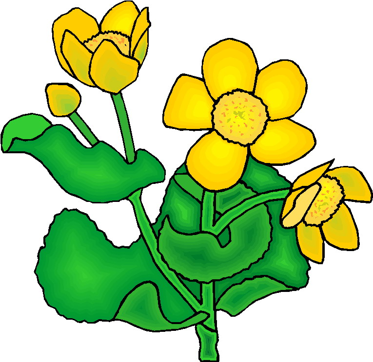 Clip Art Flowers And Plants Plants-Clip art Flowers and plants Plants-9