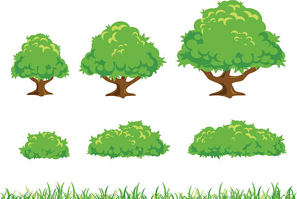 Simple Tree And Bush Illustration Vector-Simple Tree and Bush Illustration vector art illustration-17