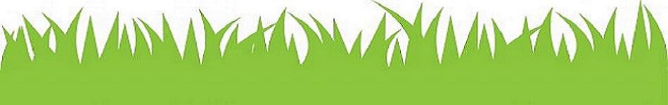 Sierra Landscaping Inc Landscapers In Winter Garden Windermere Fl