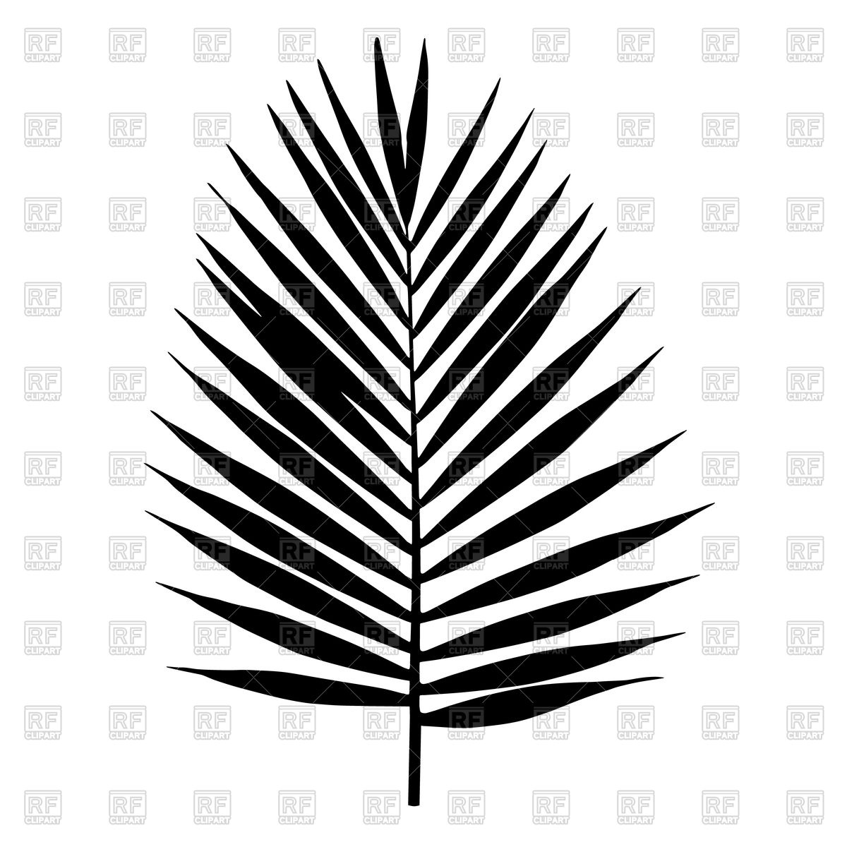 Silhouette of palm leaf