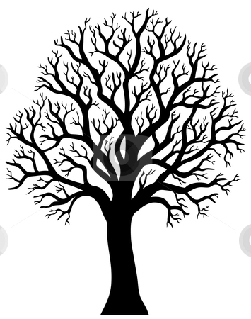 Silhouette of tree without .