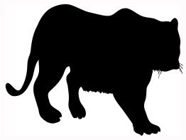 Silhouette Tiger clip art, Silhouette clipart. big silhouette of tiger black ...