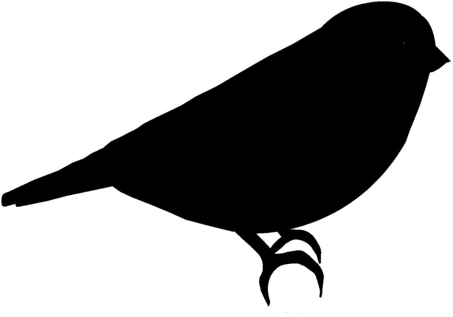 Simple Bird Outline - ClipArt Best ...