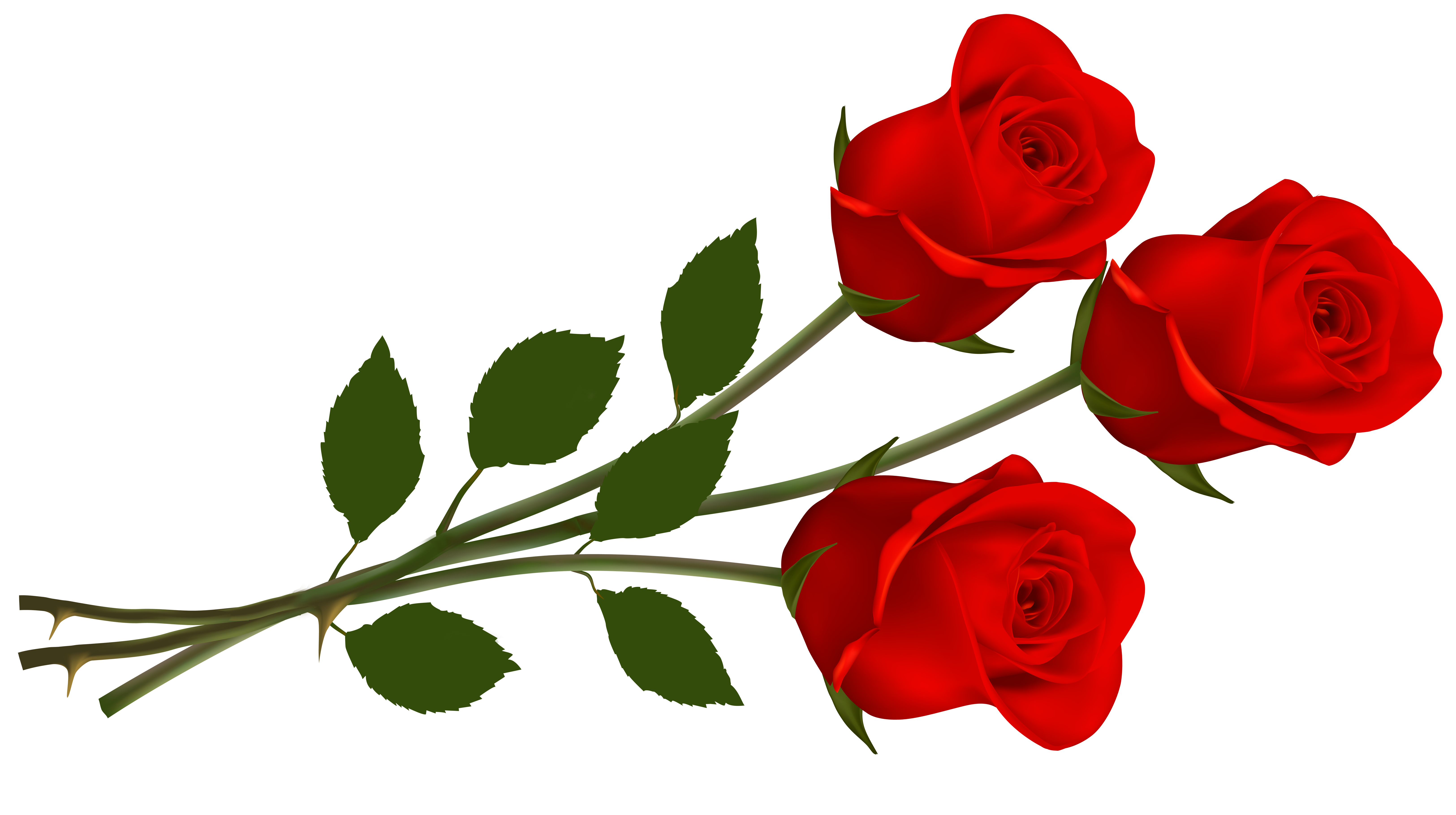 Single red rose clipart - ClipartFest