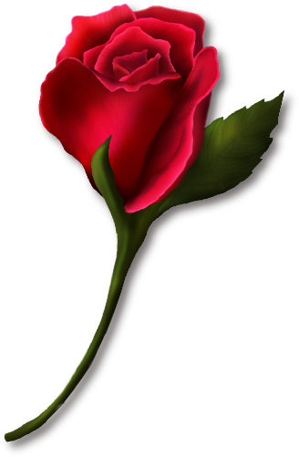 Single Rose Clip Art | Clipart library - Free Clipart Images