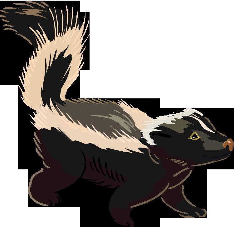 Skunk Clip Art-Skunk Clip Art-8
