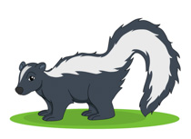 Skunk Clipart Size: 56 Kb-Skunk Clipart Size: 56 Kb-10