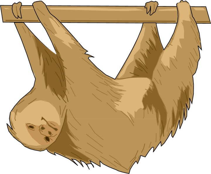 Sloth Clipart-Sloth Clipart-16