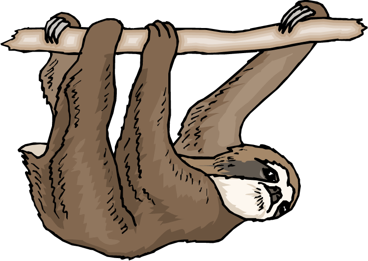 Sloth Clipart-Sloth Clipart-0