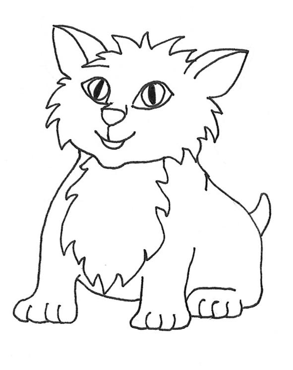Small Cute Kitten Black White, Cat ...-small cute kitten black white, cat ...-18