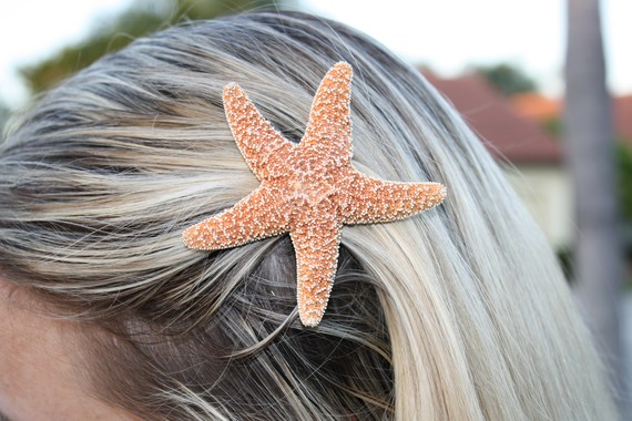Small Sugar Starfish Hair Clip Barrette Halloween Costume Mermaid Bridal Bridesmaid Bachelorette Party Hair Accessory