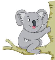 Smiling Koala In Tree Clipart Size: 66 Kb