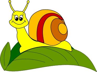 Snail Clip Art-Snail Clip Art-7