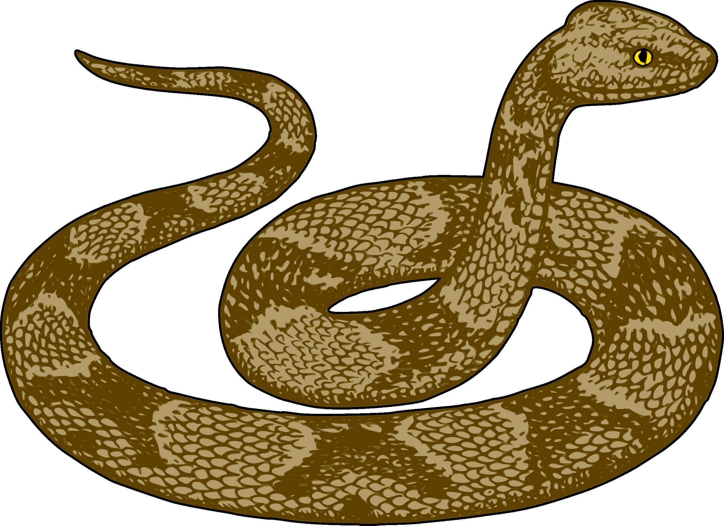 snake clipart - Snake Clipart