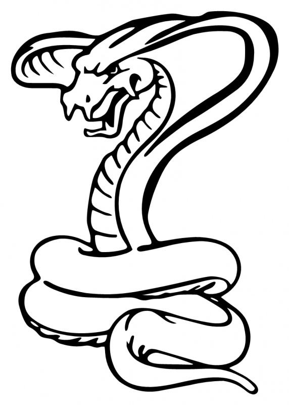 ... Snake Cobra - ClipArt Best ...-... Snake Cobra - ClipArt Best ...-17
