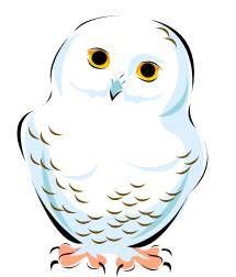 Snowy Owl Clip Art Snowy Owl Christmas D-Snowy Owl Clip Art Snowy Owl Christmas Decor Pinterest-14